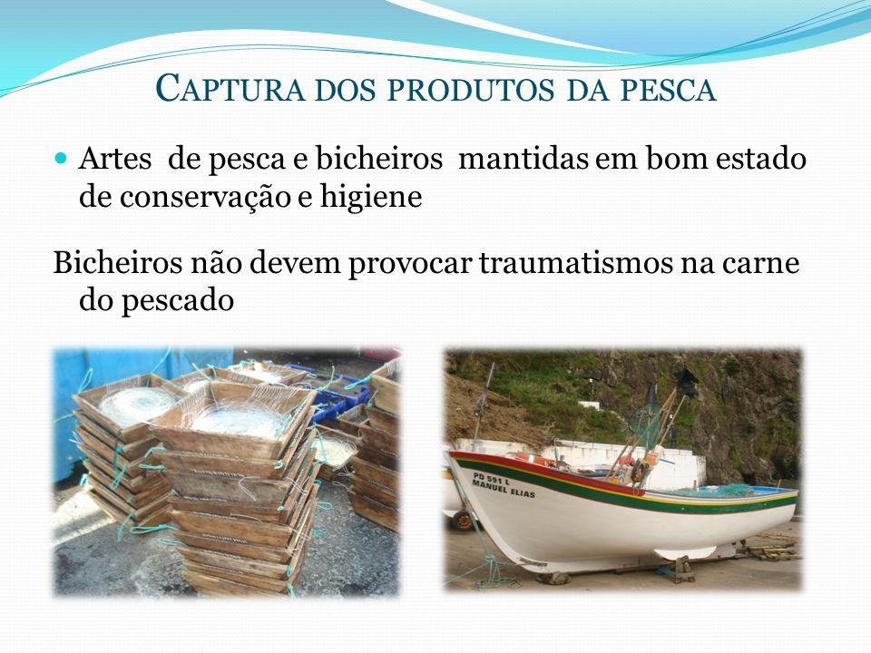 C APTURA DOS PRODUTOS DA PESCA Artes de pesca e bicheiros mantidas em bom estado de conservação e higiene Bicheiros não devem provocar traumatismos na