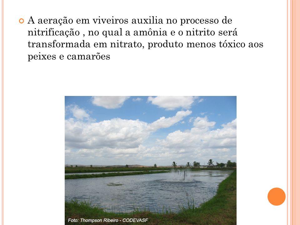 A aeração em viveiros auxilia no processo de nitrificação, no qual a amônia e o nitrito será transformada em nitrato, produto menos tóxico aos peixes e camarões