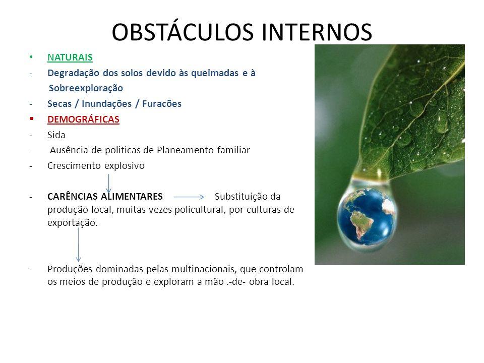 OBSTÁCULOS INTERNOS NATURAIS -Degradação dos solos devido às queimadas e à Sobreexploração -Secas / Inundações / Furacões DEMOGRÁFICAS -Sida - Ausênci