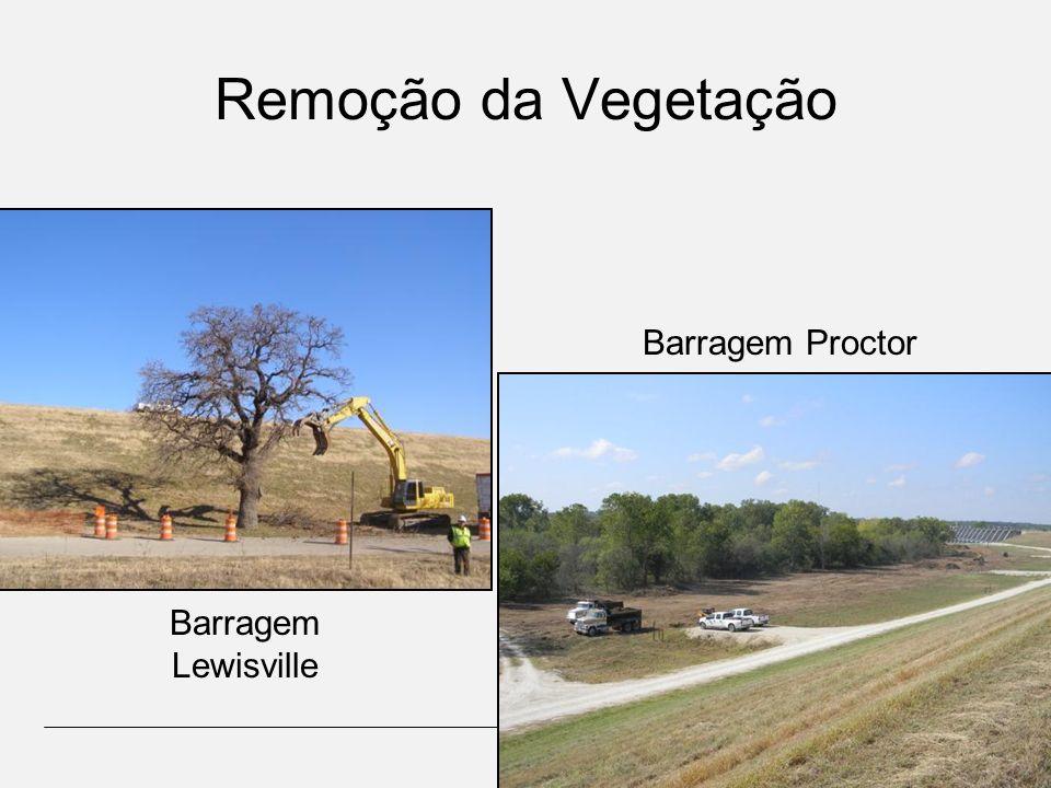 Remoção da Vegetação Barragem Lewisville Barragem Proctor