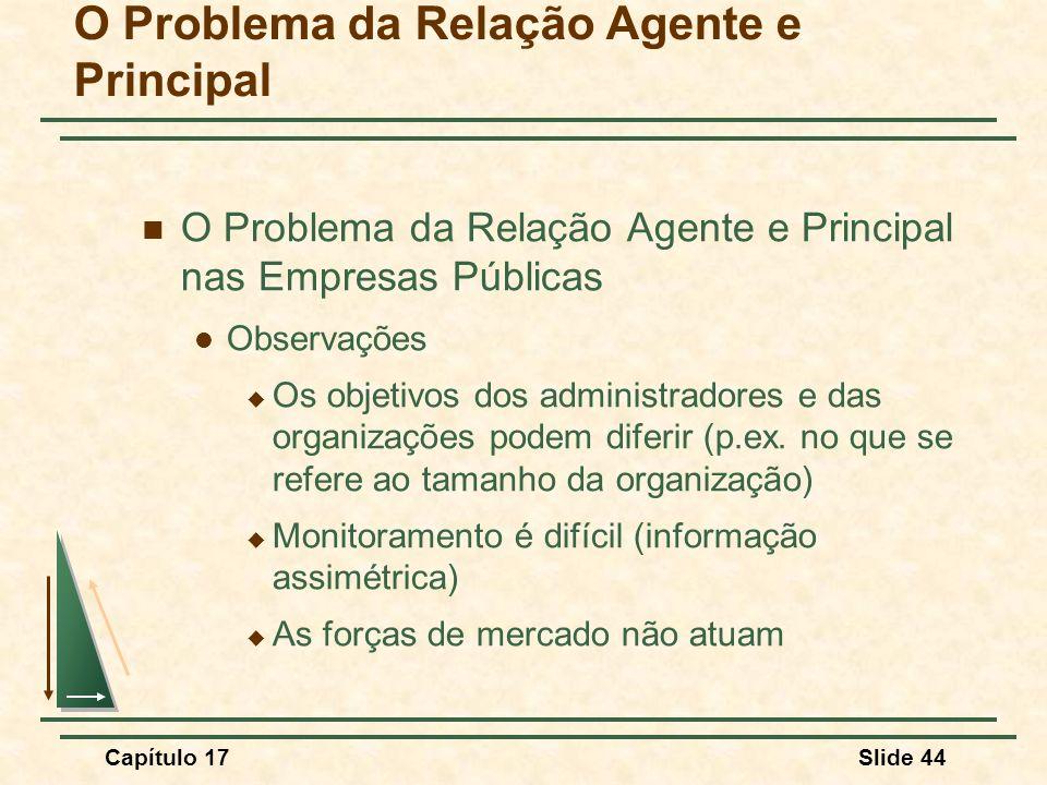 Capítulo 17Slide 44 O Problema da Relação Agente e Principal O Problema da Relação Agente e Principal nas Empresas Públicas Observações Os objetivos d