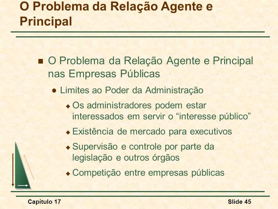 Capítulo 17Slide 45 O Problema da Relação Agente e Principal O Problema da Relação Agente e Principal nas Empresas Públicas Limites ao Poder da Admini
