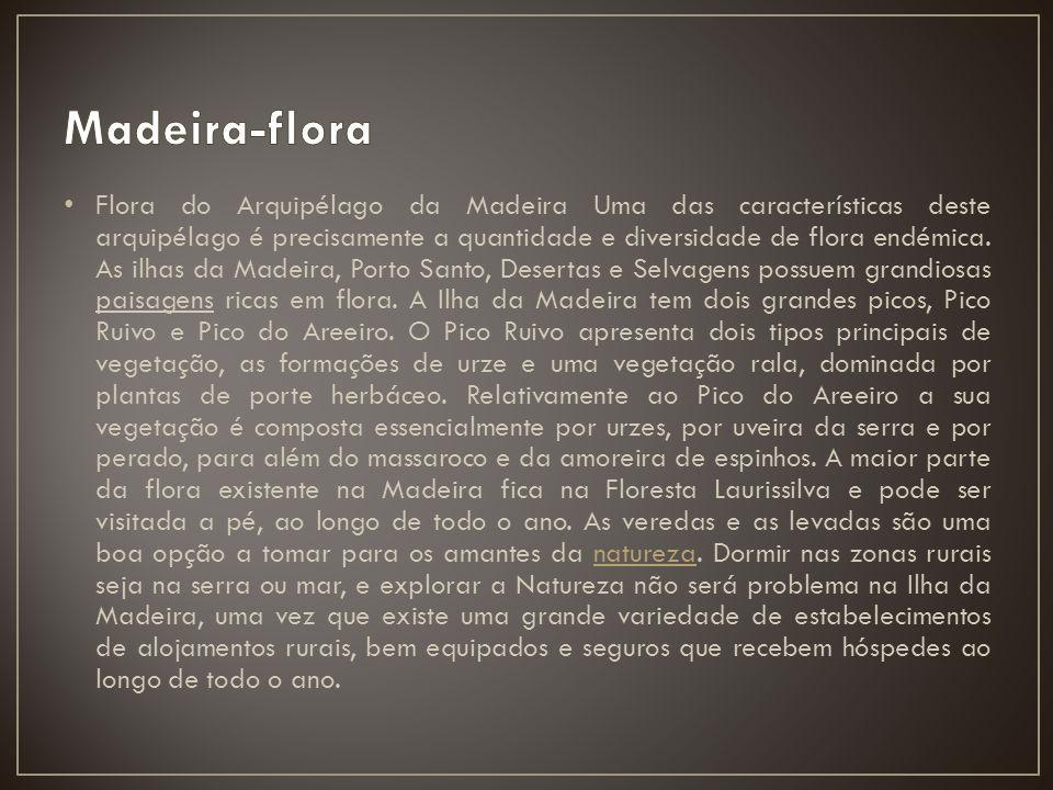 Flora do Arquipélago da Madeira Uma das características deste arquipélago é precisamente a quantidade e diversidade de flora endémica. As ilhas da Mad