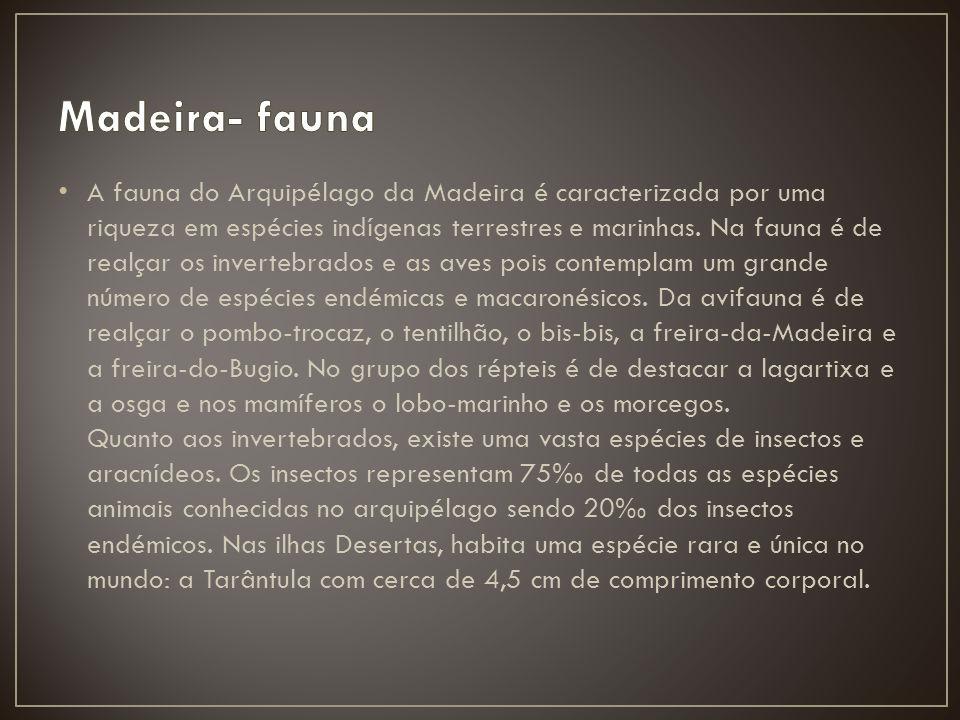 A fauna do Arquipélago da Madeira é caracterizada por uma riqueza em espécies indígenas terrestres e marinhas. Na fauna é de realçar os invertebrados