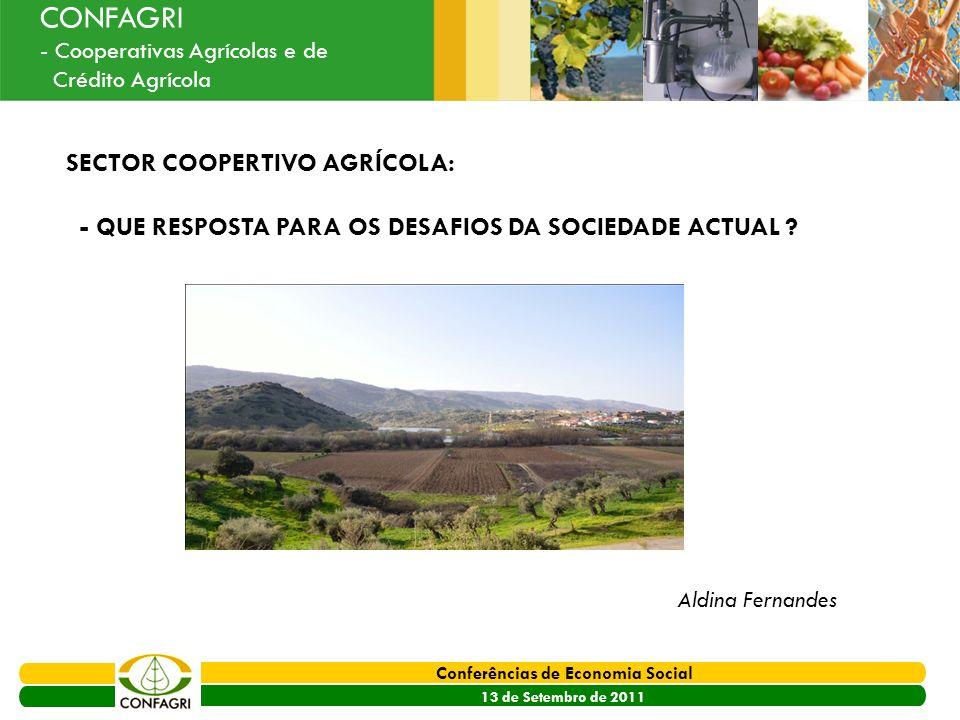 PRODER 2007 - 2013 Conferências de Economia Social 13 de Setembro de 2011 Ouvir o Sector CONFAGRI - Cooperativas Agrícolas e de Crédito Agrícola SECTO