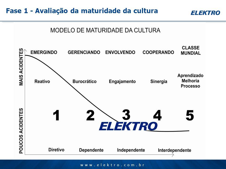 www.elektro.com.br Fase 1 - Avaliação da maturidade da cultura