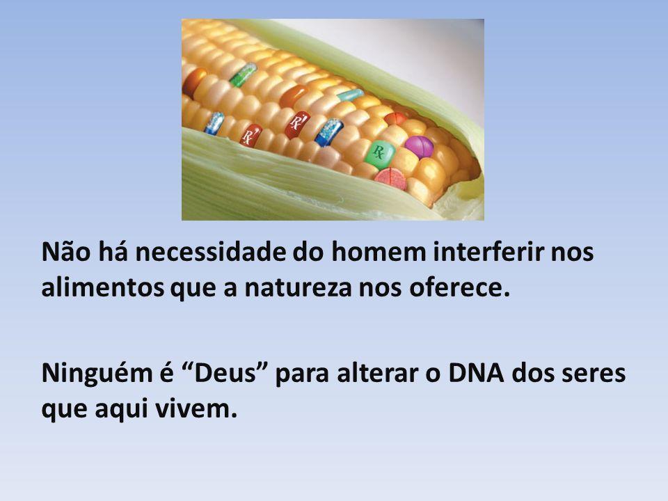 Não há necessidade do homem interferir nos alimentos que a natureza nos oferece. Ninguém é Deus para alterar o DNA dos seres que aqui vivem.