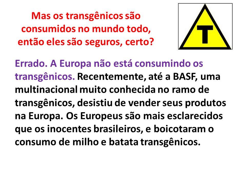 Mas os transgênicos são consumidos no mundo todo, então eles são seguros, certo? Errado. A Europa não está consumindo os transgênicos. Recentemente, a
