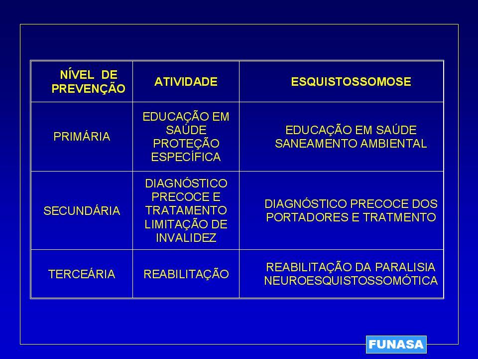 FORMAS ANATOMO-CLÍNICAS DA ESQUISTOSSOMOSE A – FASE INICIAL 1.