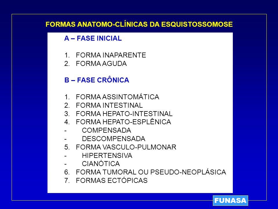 FORMAS ANATOMO-CLÍNICAS DA ESQUISTOSSOMOSE A – FASE INICIAL 1. FORMA INAPARENTE 2. FORMA AGUDA B – FASE CRÔNICA 1. FORMA ASSINTOMÁTICA 2. FORMA INTEST