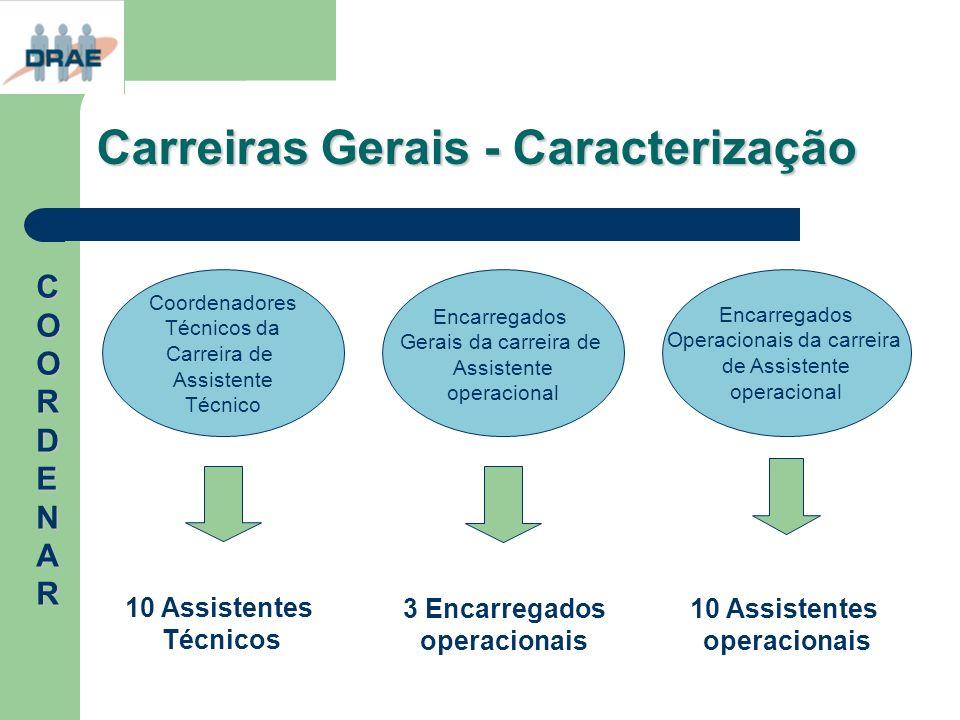 Carreiras Gerais - Caracterização Coordenadores Técnicos da Carreira de Assistente Técnico Encarregados Gerais da carreira de Assistente operacional E
