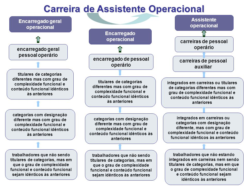 Carreira de Assistente Operacional encarregado geral pessoal operário titulares de categorias diferentes mas com grau de complexidade funcional e cont