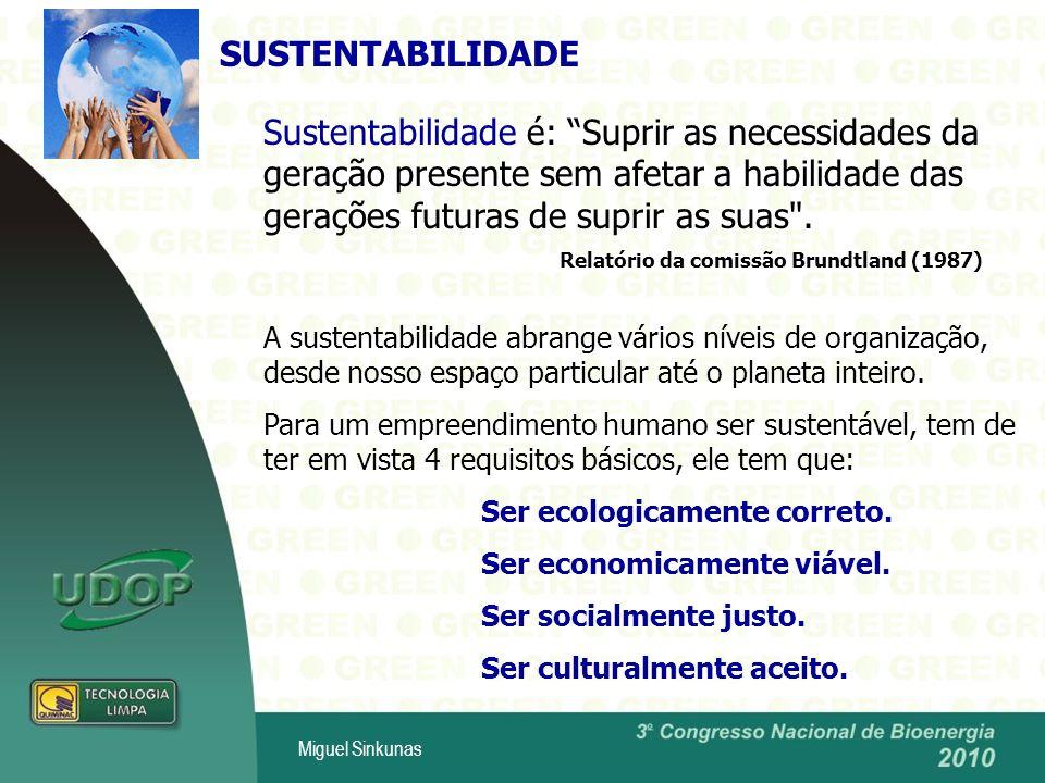 Miguel Sinkunas Sustentabilidade é: Suprir as necessidades da geração presente sem afetar a habilidade das gerações futuras de suprir as suas .
