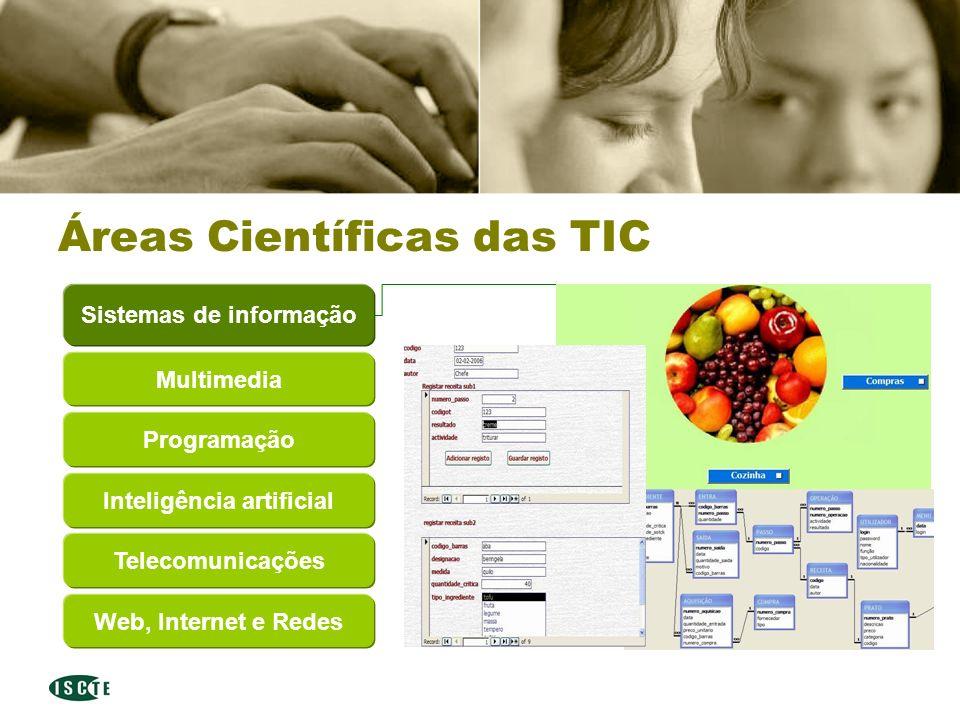 Departamento de Ciências e Tecnologias da Informação Áreas Científicas das TIC Multimedia Sistemas de informação Programação Inteligência artificial Telecomunicações Web, Internet e Redes