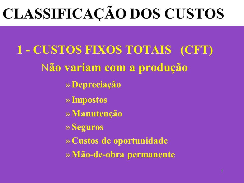5 CLASSIFICAÇÃO DOS CUSTOS 1 - CUSTOS FIXOS TOTAIS (CFT) N ão variam com a produção »Depreciação »Impostos »Manutenção »Seguros »Custos de oportunidade »Mão-de-obra permanente