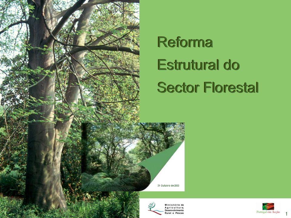 Reforma Estrutural do Sector Florestal 31 Outubro de 2003 1