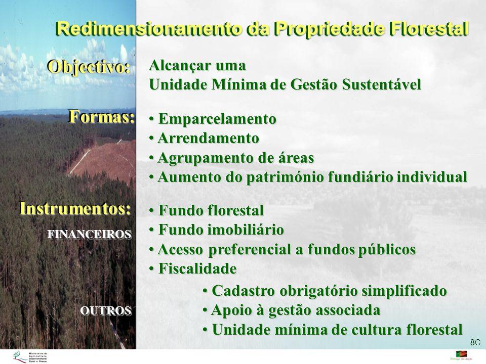 Redimensionamento da Propriedade Florestal Objectivo:Objectivo: Alcançar uma Unidade Mínima de Gestão Sustentável Alcançar uma Unidade Mínima de Gestã