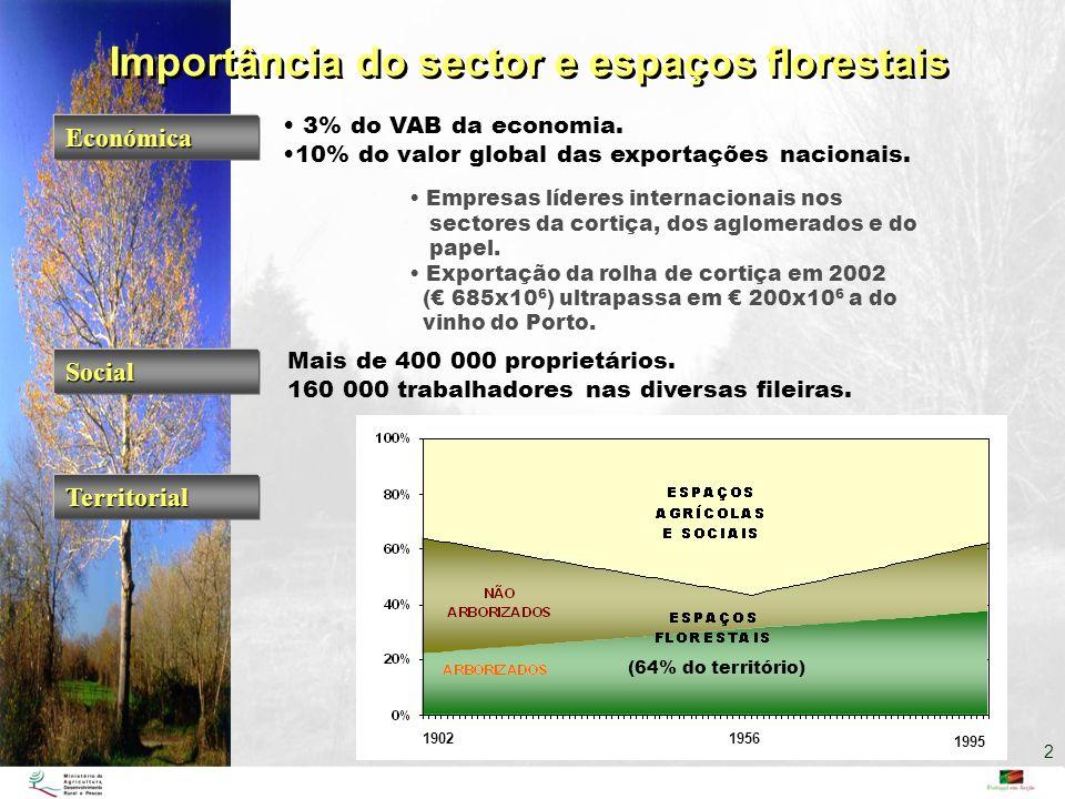 Importância do sector e espaços florestais 1995 19561902 (64% do território) Territorial Económica 3% do VAB da economia. 10% do valor global das expo