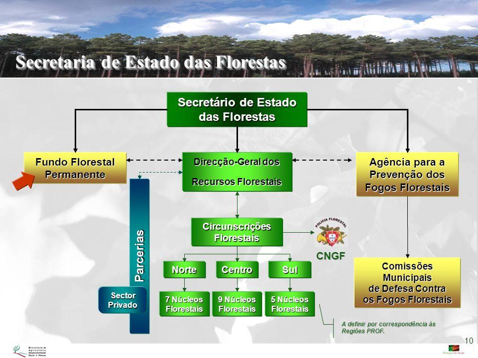 Secretaria de Estado das Florestas Secretário de Estado das Florestas Fundo Florestal Permanente Direcção-Geral dos Recursos Florestais Agência para a