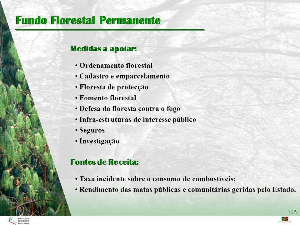 Fundo Florestal Permanente Ordenamento florestal Cadastro e emparcelamento Floresta de protecção Fomento florestal Defesa da floresta contra o fogo In