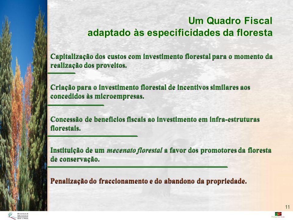 Um Quadro Fiscal adaptado às especificidades da floresta Um Quadro Fiscal adaptado às especificidades da floresta Capitalização dos custos com investi