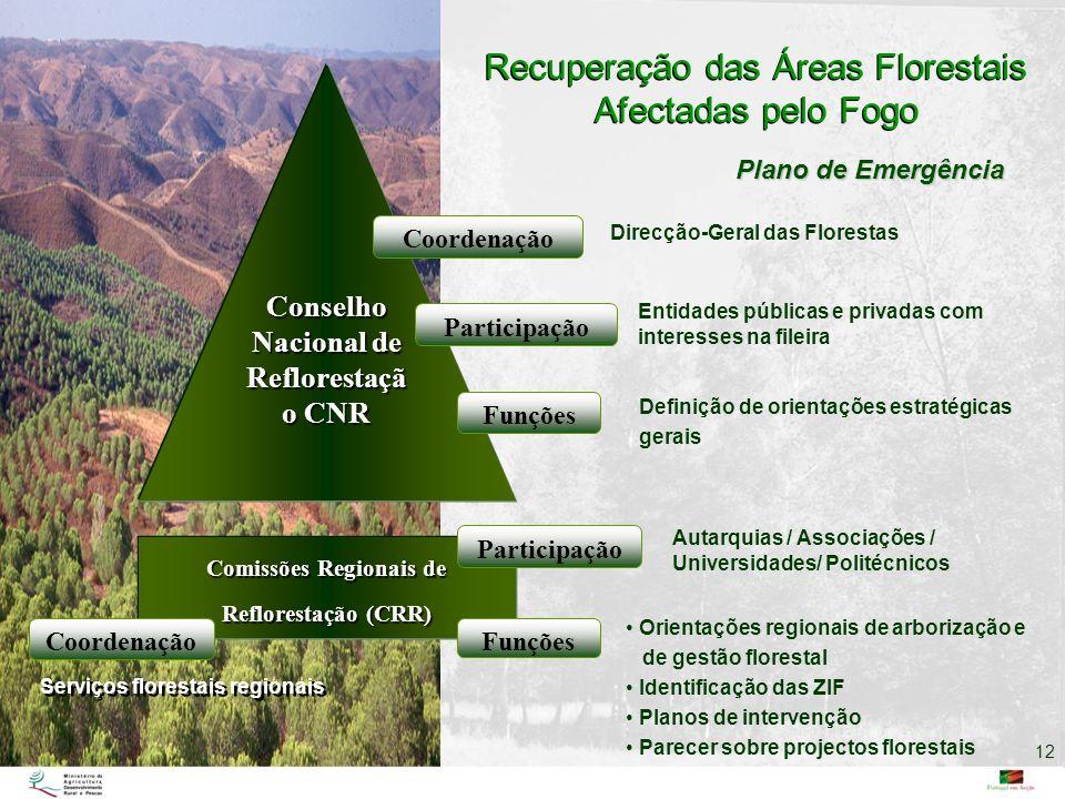 Conselho Nacional de Reflorestaçã o CNR Comissões Regionais de Reflorestação (CRR) Recuperação das Áreas Florestais Afectadas pelo Fogo Coordenação Pa