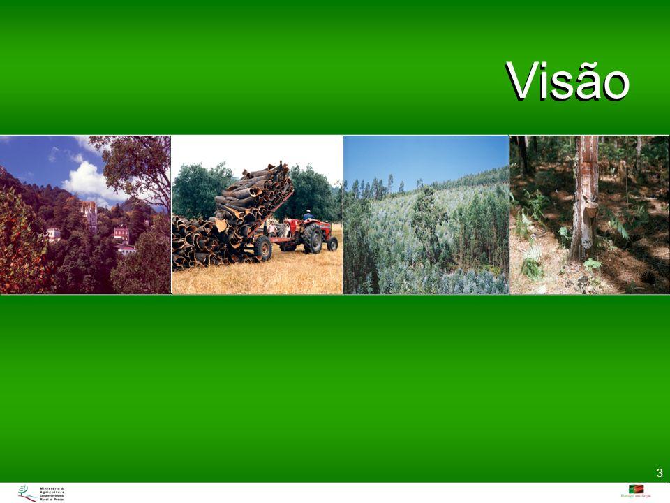 Visão Uma floresta para o futuro que seja economicamente viável, ecologicamente responsável e proporcione qualidade de vida às populações. Através da