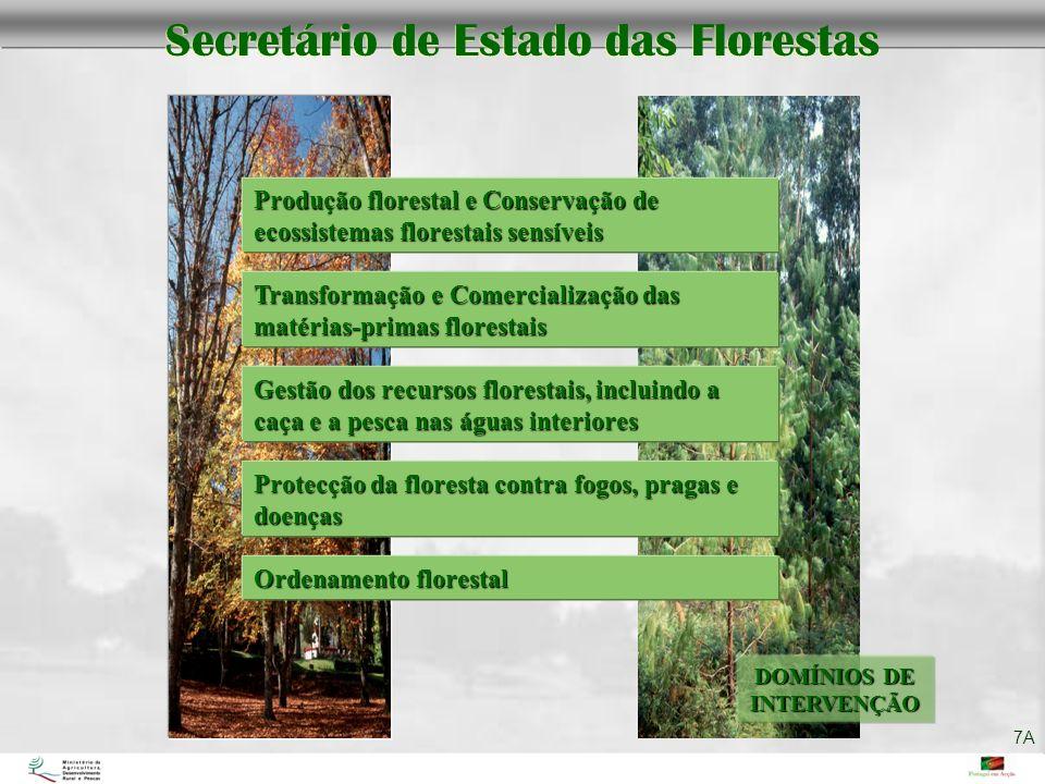 DOMÍNIOS DE INTERVENÇÃO Secretário de Estado das Florestas Ordenamento florestal Produção florestal e Conservação de ecossistemas florestais sensíveis