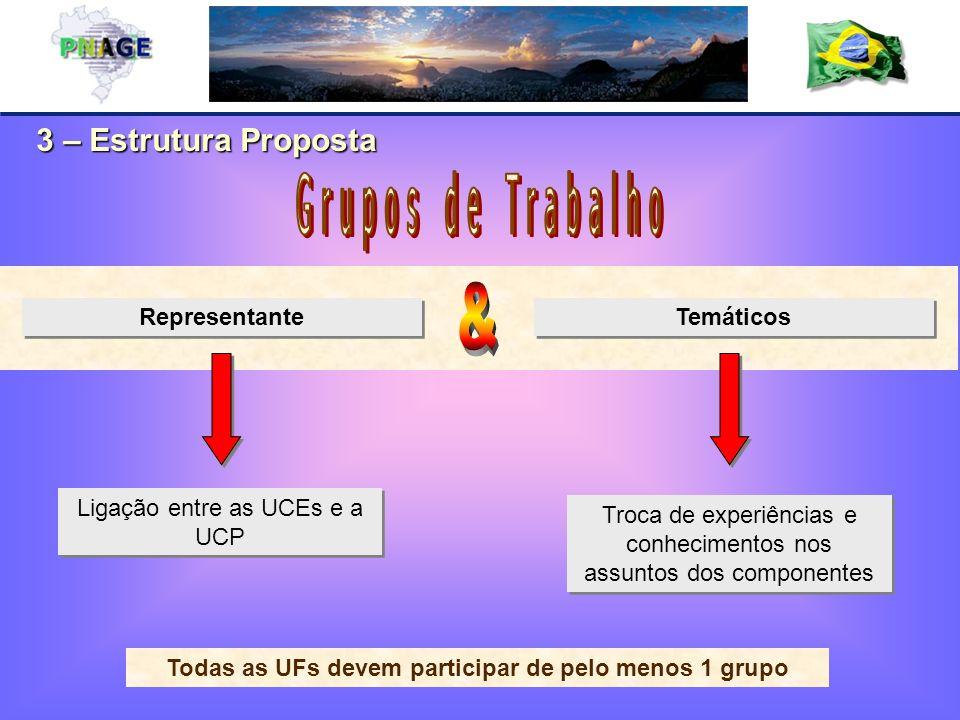 3 – Estrutura Proposta Representante Temáticos Ligação entre as UCEs e a UCP Troca de experiências e conhecimentos nos assuntos dos componentes Todas as UFs devem participar de pelo menos 1 grupo