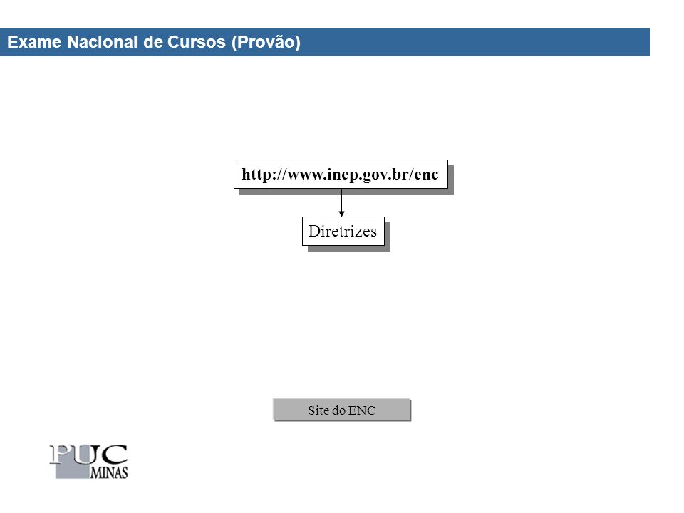 Exame Nacional de Cursos (Provão) Site do ENC http://www.inep.gov.br/enc Diretrizes