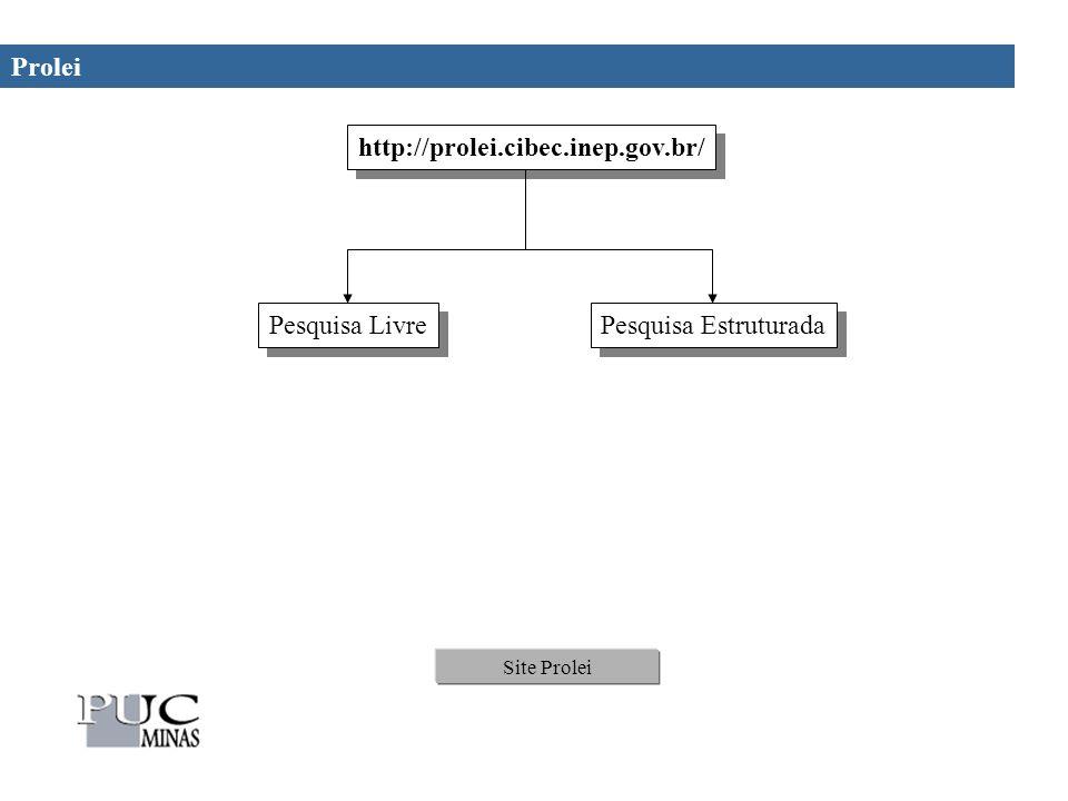 Prolei Site Prolei http://prolei.cibec.inep.gov.br/ Pesquisa Livre Pesquisa Estruturada