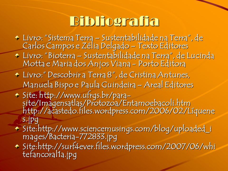 Bibliografia Livro: Sistema Terra – Sustentabilidade na Terra, de Carlos Campos e Zélia Delgado – Texto Editores Livro: Bioterra – Sustentabilidade na