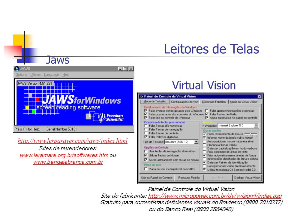 Leitores de Telas http://www.lerparaver.com/jaws/index.html Sites de revendedores: www.laramara.org.br/softwares.htm ou www.laramara.org.br/softwares.htm www.bengalabranca.com.br Painel de Controle do Virtual Vision Site do fabricante: http://www.micropower.com.br/dv/vvision4/index.asphttp://www.micropower.com.br/dv/vvision4/index.asp Gratuito para correntistas deficientes visuais do Bradesco (0800 7010237) ou do Banco Real (0800 2864040) Jaws Virtual Vision