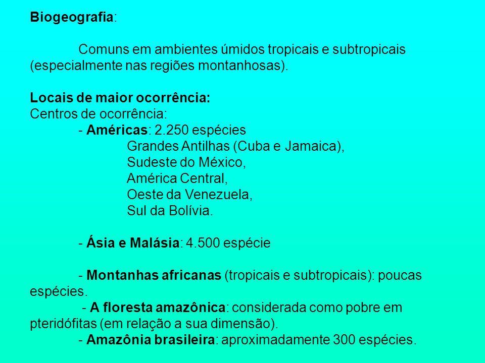 Biogeografia: Comuns em ambientes úmidos tropicais e subtropicais (especialmente nas regiões montanhosas). Locais de maior ocorrência: Centros de ocor
