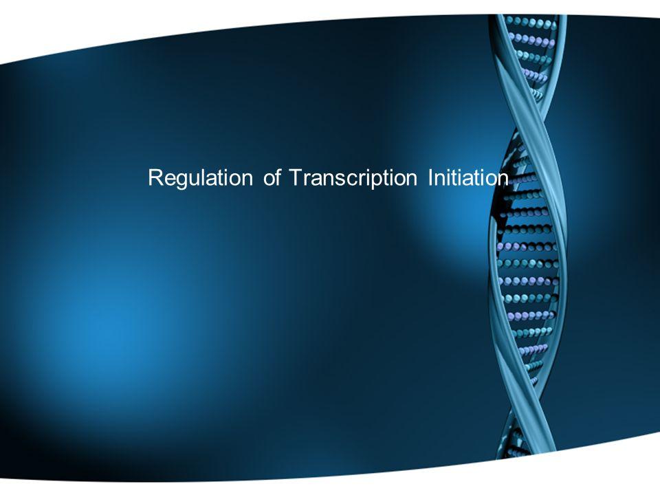 Regulation of Transcription Initiation