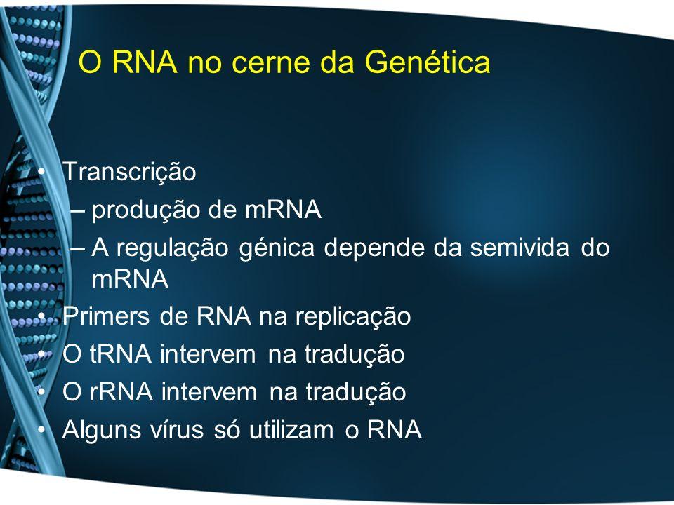 O RNA no cerne da Genética Transcrição –produção de mRNA –A regulação génica depende da semivida do mRNA Primers de RNA na replicação O tRNA intervem