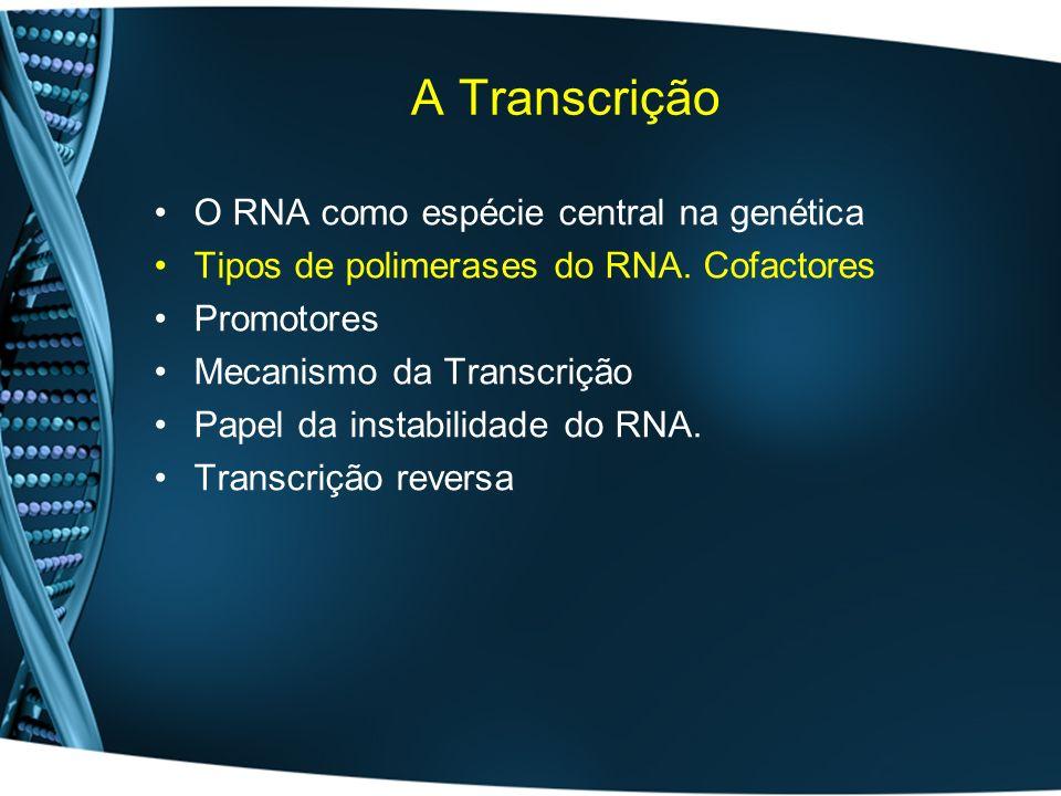 Polimerases do RNA Eucariotas: –Tipo I – rRNA (50-70%) –Tipo II – hnRNA (20-40%; mRNA) –Tipo III – restantes espécies de RNA (10%;tRNA, snRNA) –Mitocondrias –Cloroplastos Formadas por várias subunidades com funções específicas