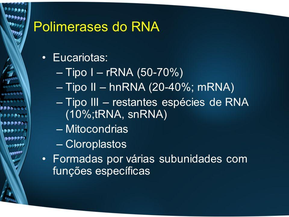 Polimerases do RNA Eucariotas: –Tipo I – rRNA (50-70%) –Tipo II – hnRNA (20-40%; mRNA) –Tipo III – restantes espécies de RNA (10%;tRNA, snRNA) –Mitoco