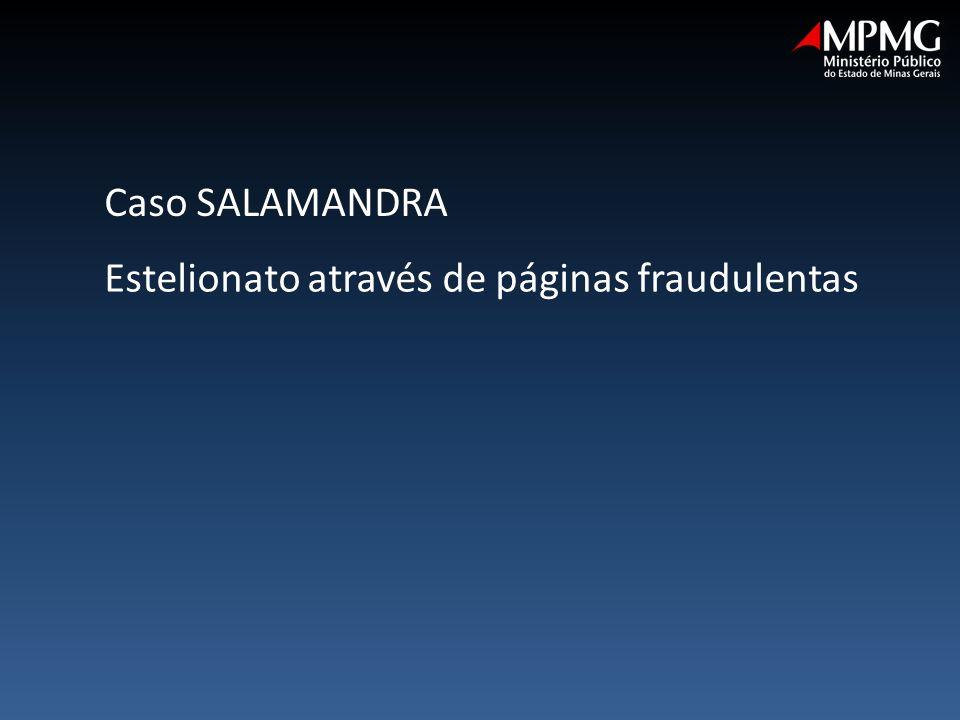 Estelionato através de páginas fraudulentas Caso SALAMANDRA
