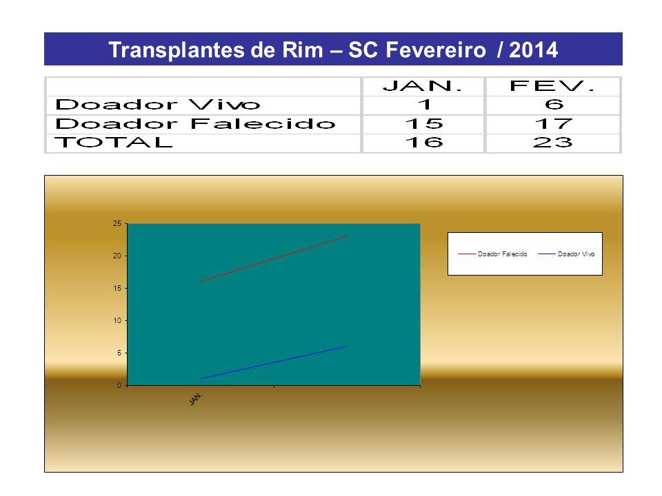 Transplantes de Rim – SC Fevereiro / 2014