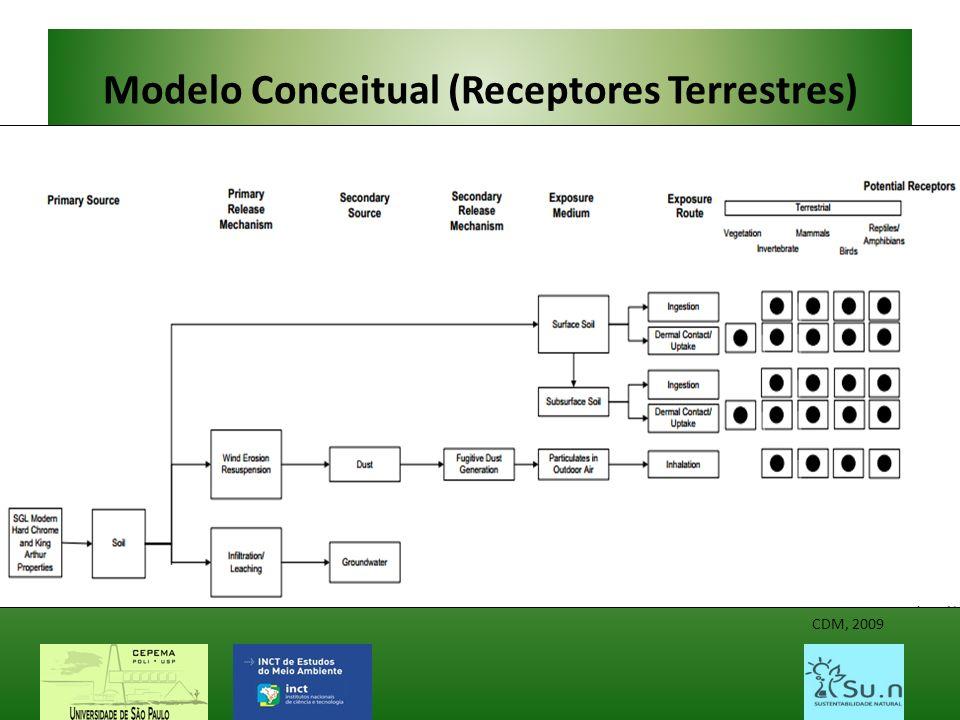 Modelo Conceitual (Receptores Terrestres) CDM, 2009
