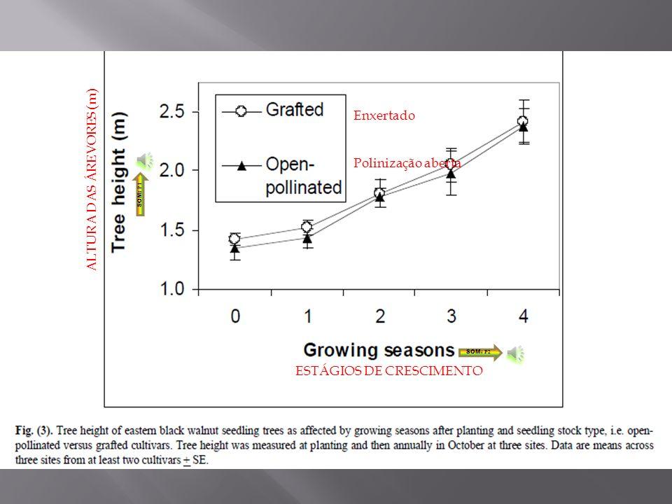 A média anual de percentagem de árvores não-enxertadas com flores foi de 1% em os dois primeiros anos após o plantio, e aumentou para 7% no terceiro ano e para 30% em quatro anos.