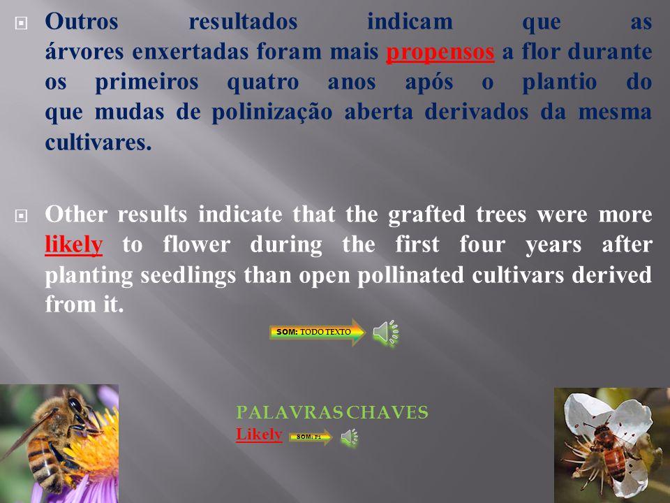Indicaram que mudas de raízes nuas podem ser usadas em pomares de nogueiras pretas estabelecidos para produção.