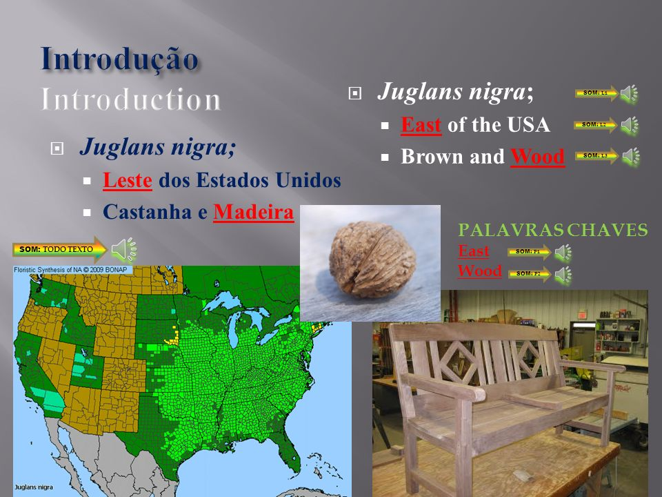 Juglans nigra; Leste dos Estados Unidos Castanha e Madeira Juglans nigra; East of the USA Brown and Wood SOM: TODO TEXTO SOM: L1 SOM: L2 SOM: L3 East Wood PALAVRAS CHAVES SOM: P1 SOM: P2