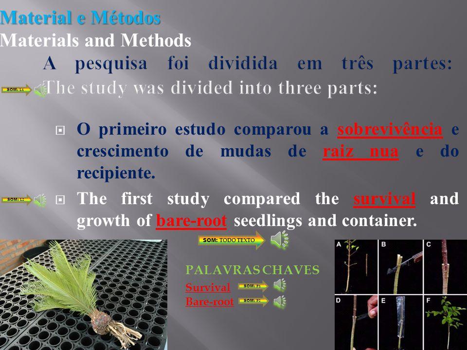 Práticas agroflorestais; Atratividade econômica; US$0,50 US$ 5,00 Raiz nua e enxerto Agroforestry practices; Economic attractiveness; $ 0.50 $ 5.00 Bare Root and container stock SOM: L1 SOM: L2 SOM: L3 SOM: L4 SOM: L5 SOM: TODO TEXTO Root PALAVRAS CHAVES SOM: P1