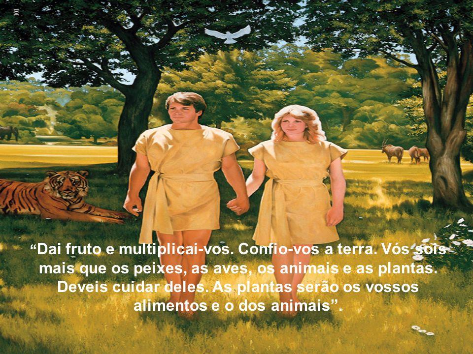 E foi o quinto dia. Então, disse Deus: façamos pessoas à Nossa imagem e semelhança. Quero confiar-lhes a terra, todos os peixes, aves, animais e plant