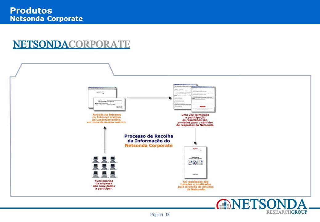Página 18 Produtos Netsonda Corporate