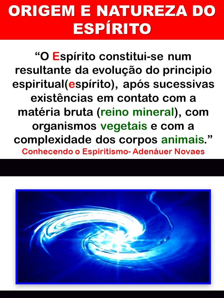 ORIGEM E NATUREZA DO ESPÍRITO O Espírito constitui-se num resultante da evolução do principio espiritual(espírito), após sucessivas existências em con