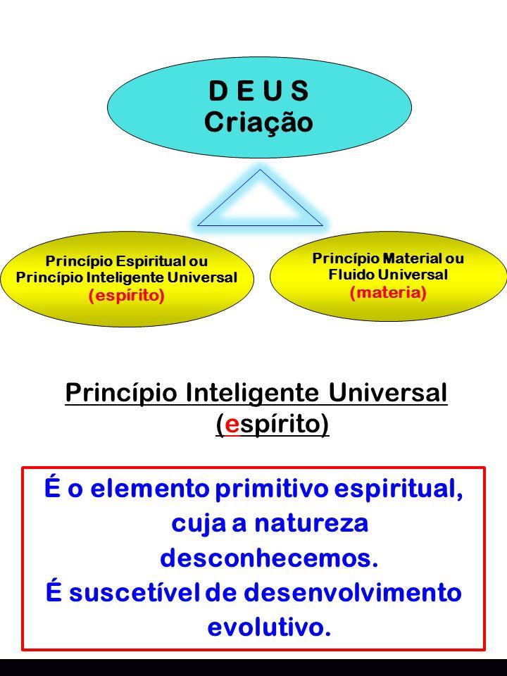 D E U S Criação Princípio Espiritual ou Princípio Inteligente Universal (espírito) Princípio Material ou Fluido Universal (materia) Princípio Intelige