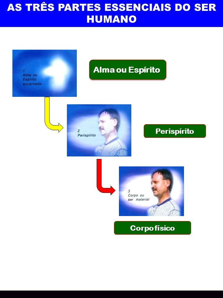 AS TRÊS PARTES ESSENCIAIS DO SER HUMANO Alma ou Espírito Perispírito Corpo físico